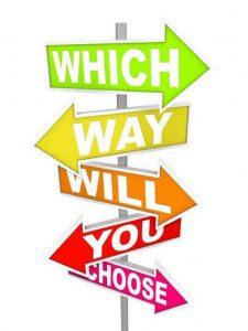 Career Guidance & Educational Planning Expert